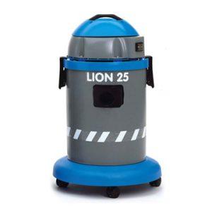 Lion-25_1